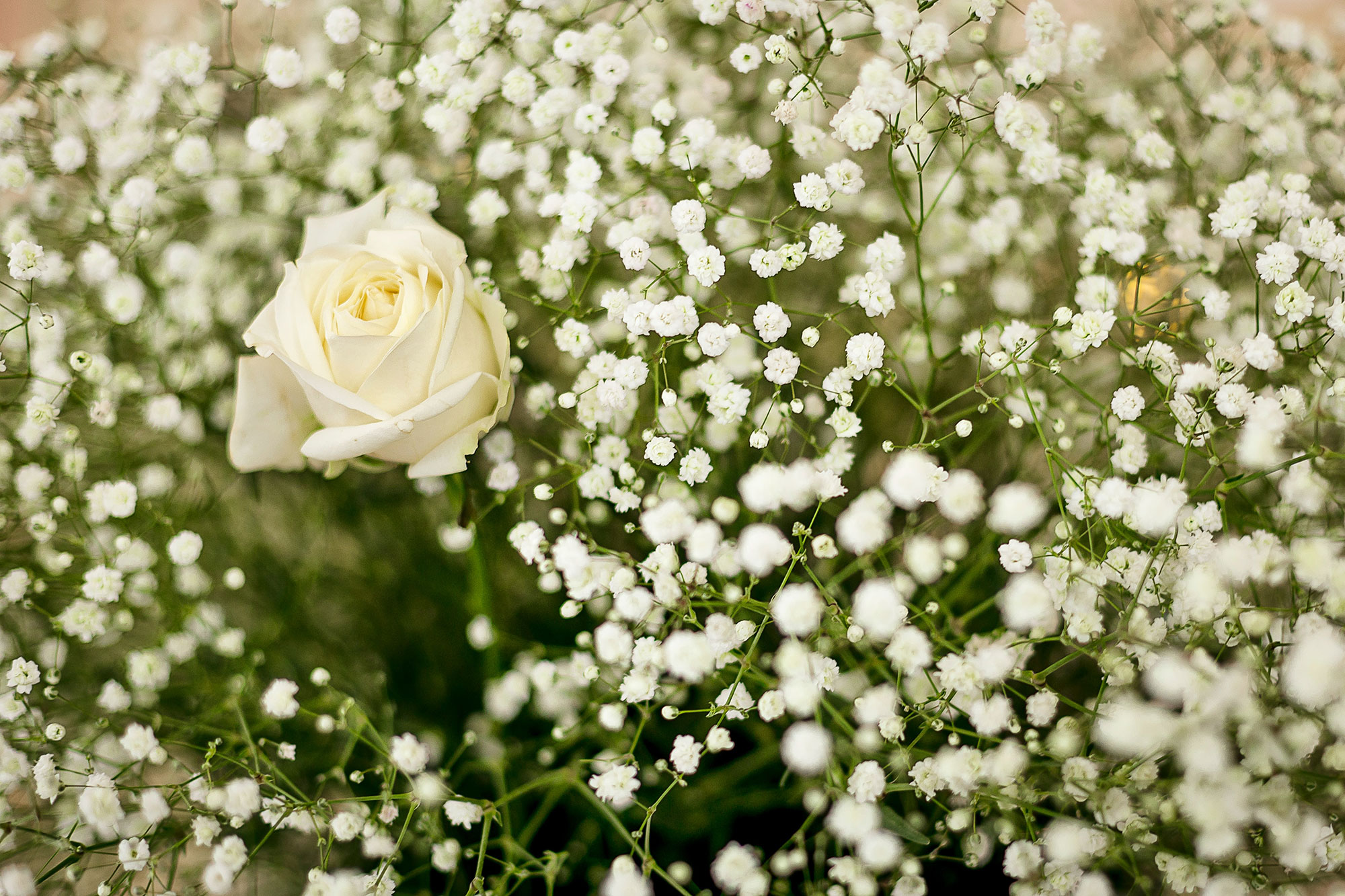 Lowering funeral costs in the uk
